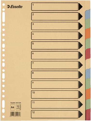 Tabbladen Esselte A4 23-gaats karton 10-delig assorti